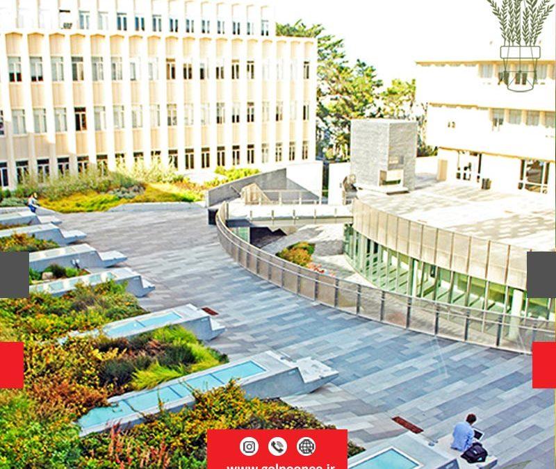 فضای سبز میدان شهری